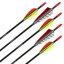 Complete Arrow | TROPOSPHERE - Fibreglass Arrow - with CUSTOM Fletching