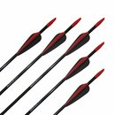 !!TIP!! TropoSPHERE Fibreglass Arrow with Standard Fletching