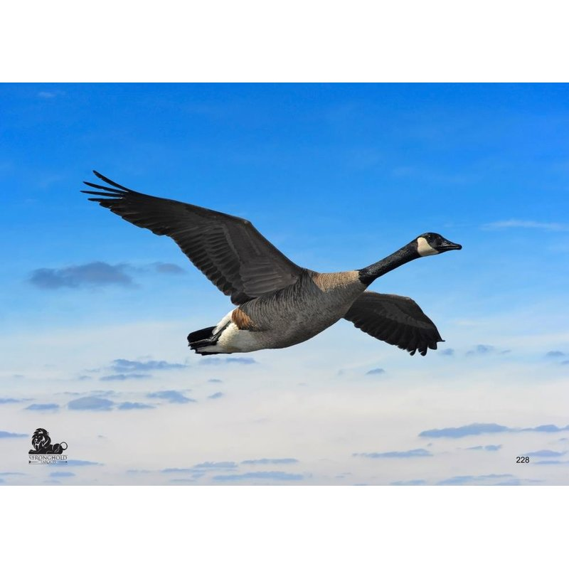 STRONGHOLD Animal Target Face - Flying Goose - 42 x 59 cm - hydrophobic / tear-resistant