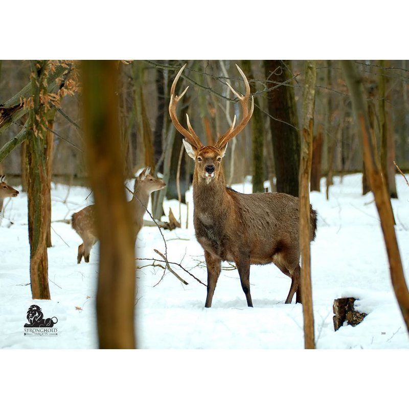STRONGHOLD Animal Target Face - Deer Pack in the Winter Forest - 59 x 84 cm - hydrophobic / tear-resistant